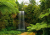Rainforest Waterfall, photo murale, 180x127 cm, 1 part