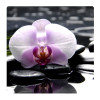 Black rocks and orchid, Photo pour accrocher au mur faite en plexiglass 29 x 29 cm