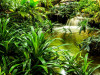 Jungle waterfall lagoon, photo murale, 360x255 cm, 4 parts