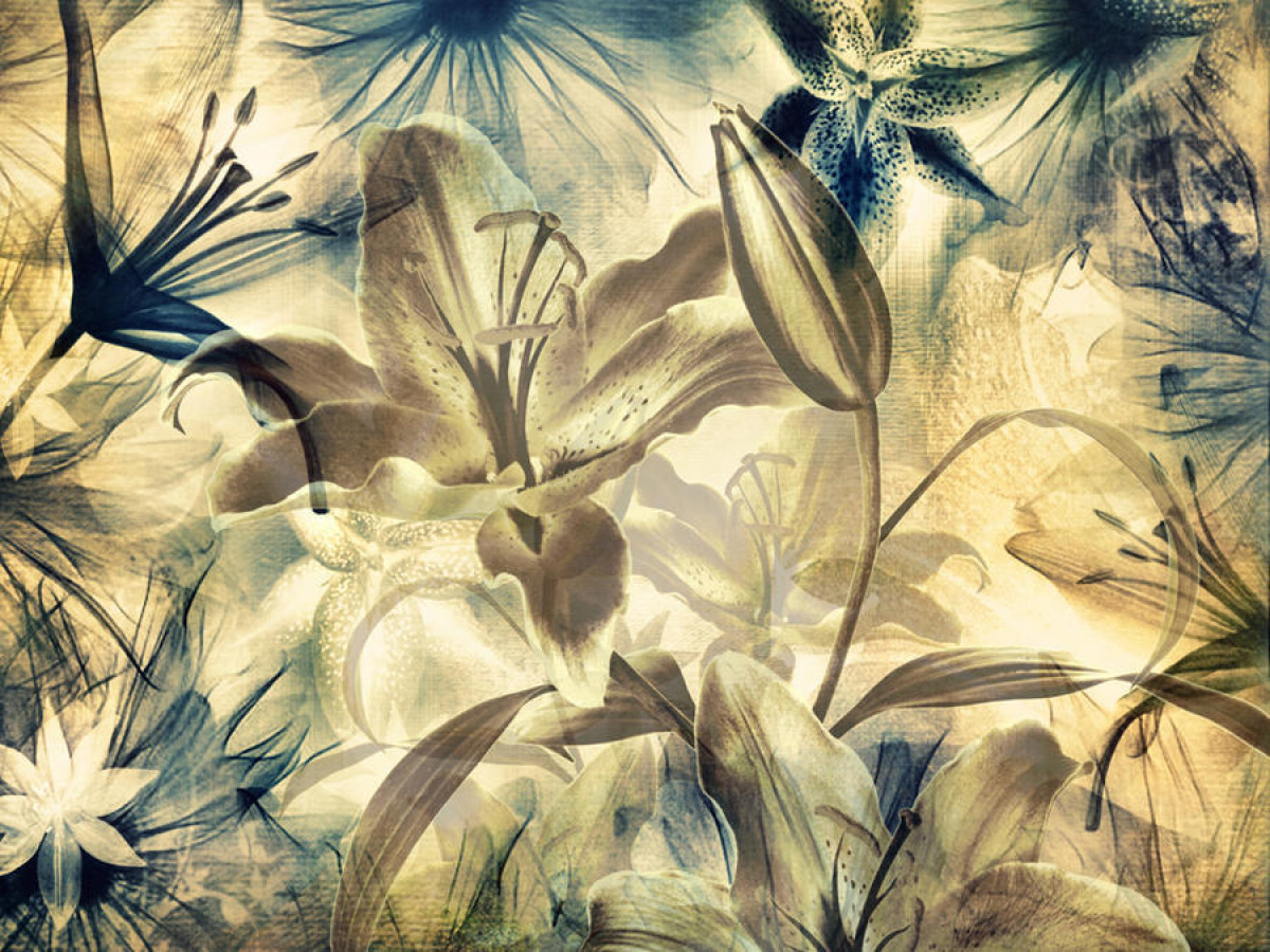 Lilies, photo murale, 360x254 cm, 4 parts