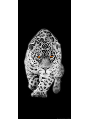 Leopard, intissé photo mural, 90 x 202 cm, 1 part