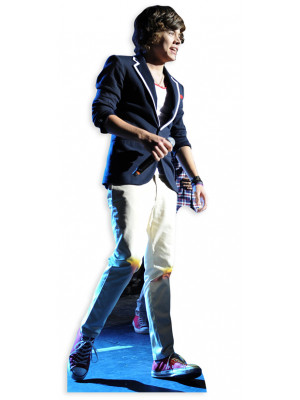 Figurine en carton taille reelle Harry Styles - 1 Direction 165cm
