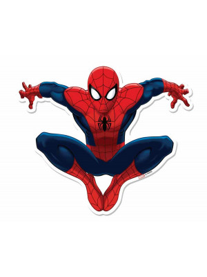 Blason mural en carton Spiderman   66  cm
