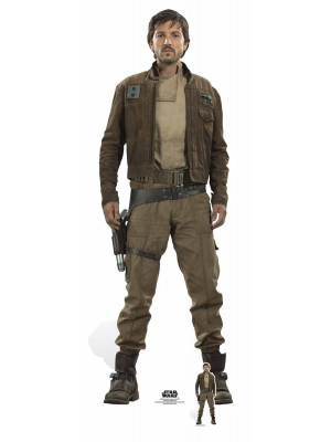 Figurine en carton taille réelle Captain cassian Andor Star Wars Rogue one